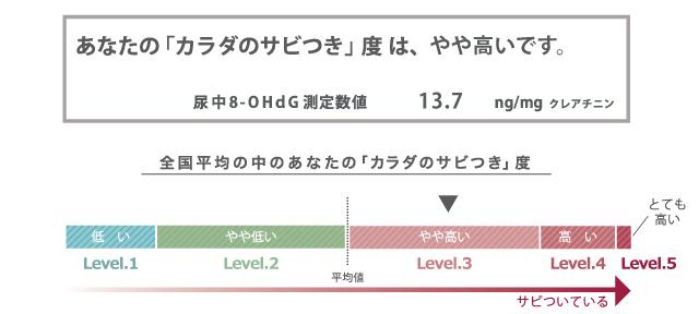 サビ測定結果例_1