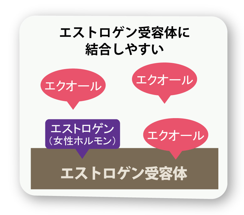 soy_data_03