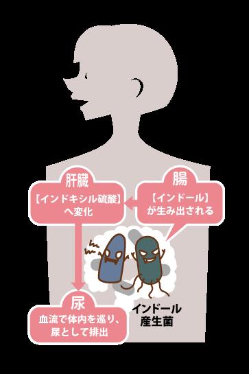 chou_image